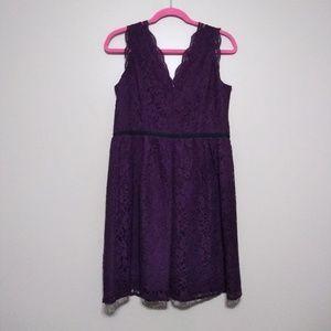 Loft deep plum lace sheath dress size 8P nwt
